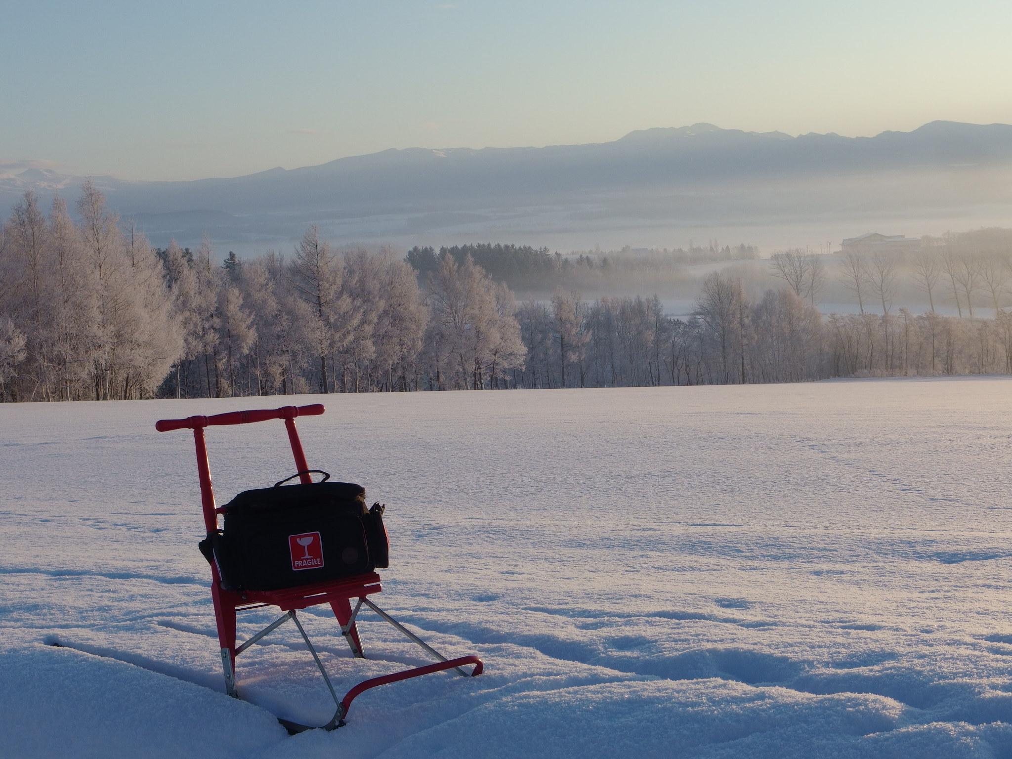 雪かきをする朝も少ないので、そりに乗って散歩に出ました。