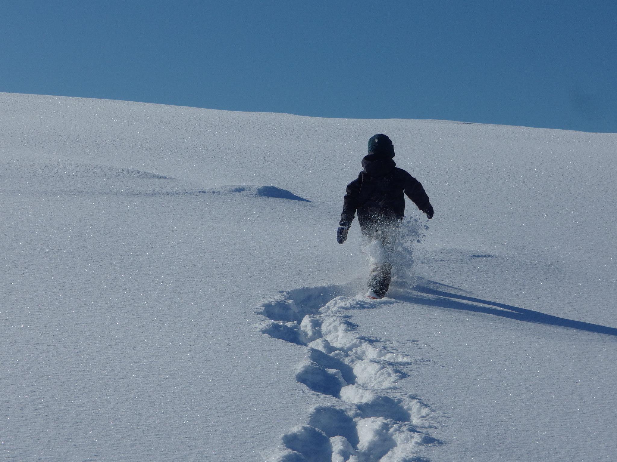 スノーシューを履いた愛息は工房の裏の雪原をどんどん登って行きます。