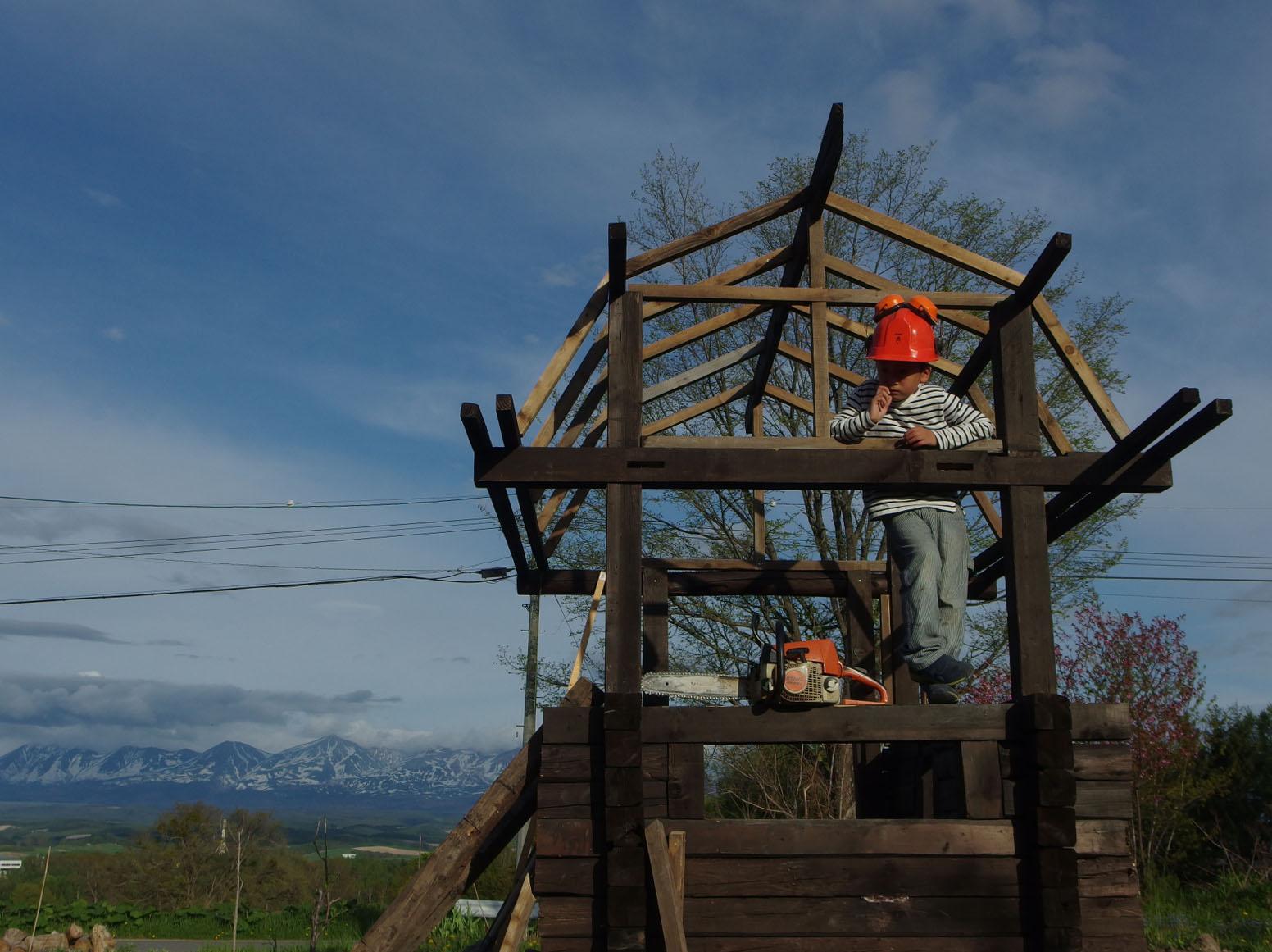 仕事を終え、陽が沈むまでの時間は愛息とにわとり小屋作りの時間です。