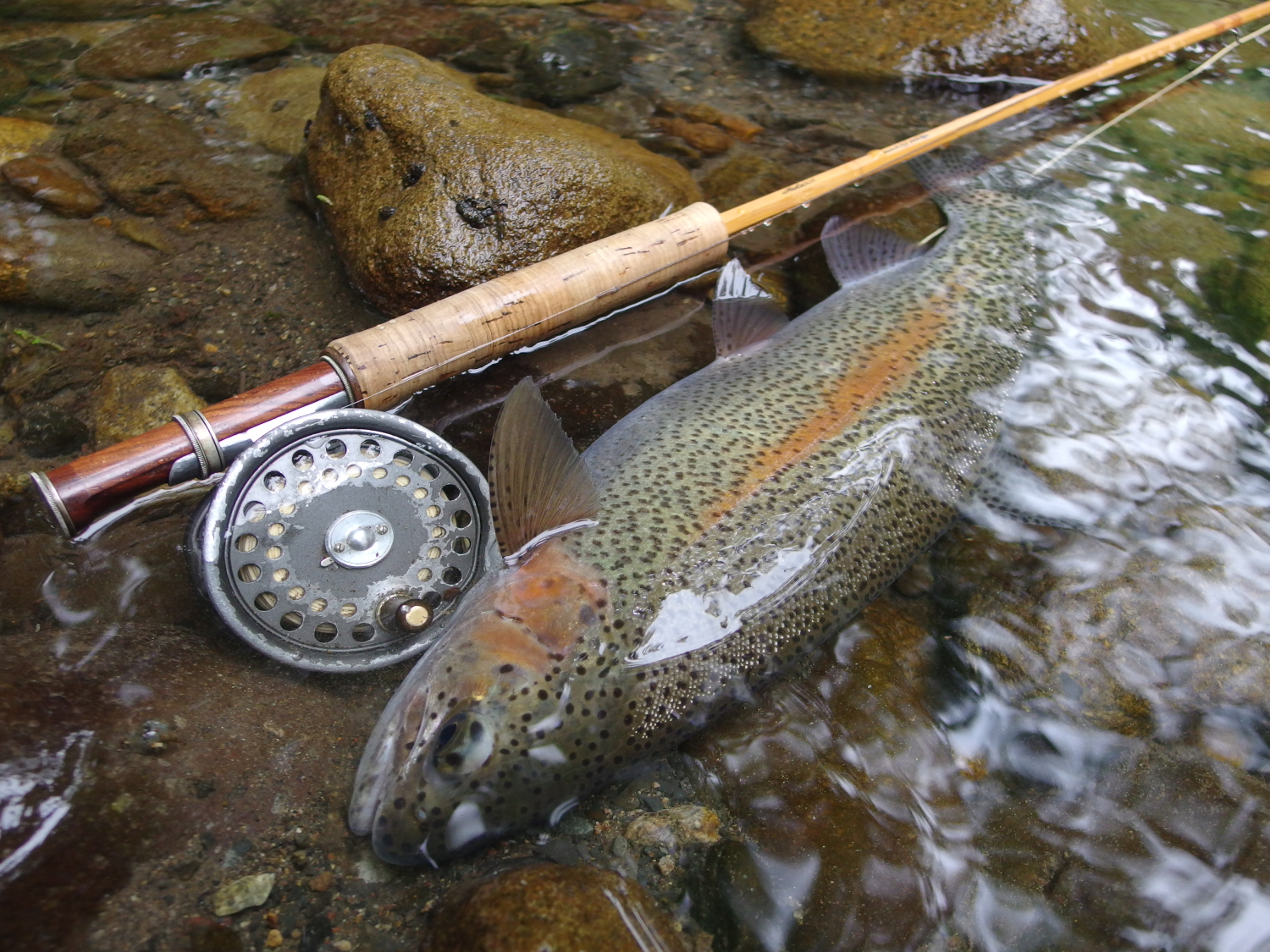 05:49 pm Northern Hokkaido, Japan / Water temperature: 11℃ / Hatch: caddis/ Fly: CDC caddis #12
