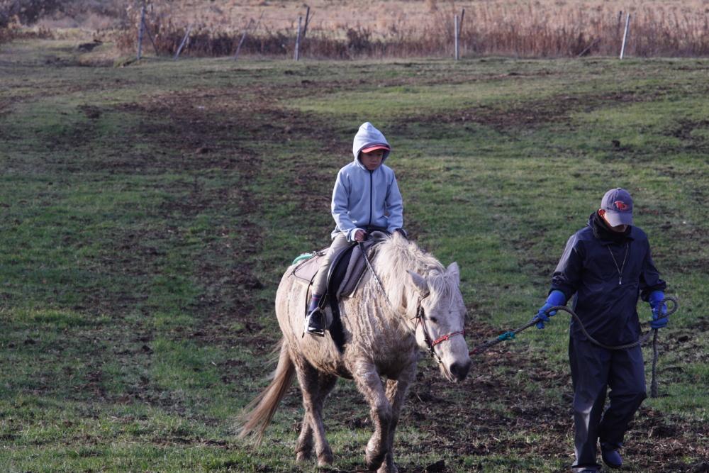 愛息は馬に乗ったり