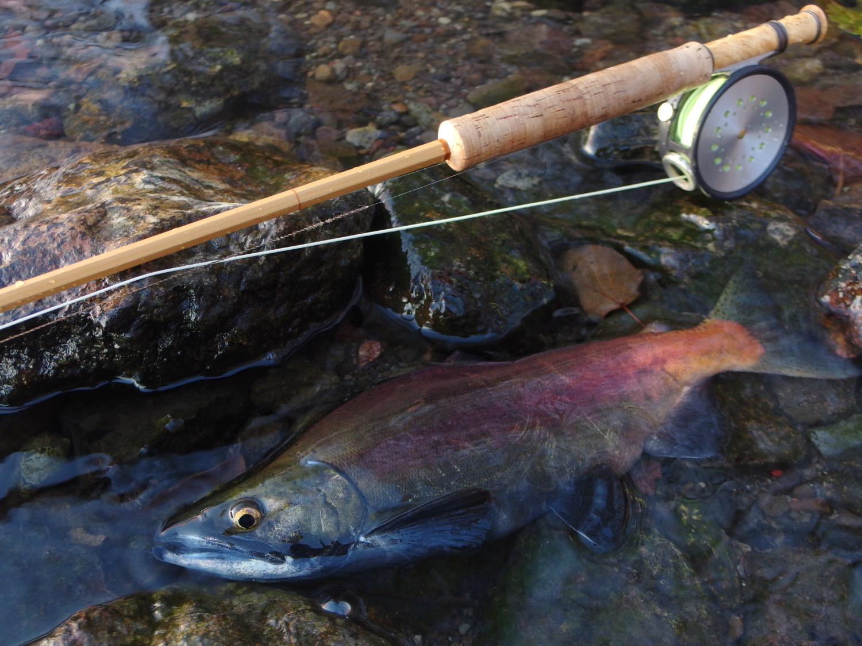 wetflyでヒメマス釣りを楽しみました。