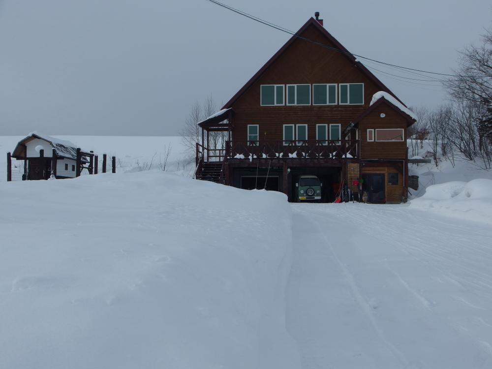 ここ数年で最も積雪が多い12月でした。 本格的な冬が始まり、白と灰色の世界が長く続きます。